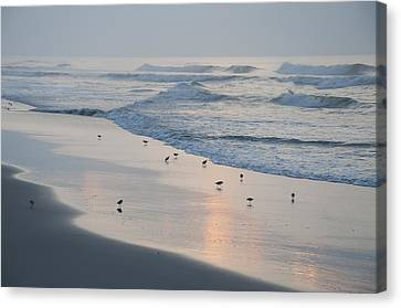 The Morning Surf Canvas Print by Bill Cannon