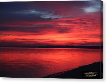 Canvas Print - The Morning View 1 by Paul SEQUENCE Ferguson             sequence dot net