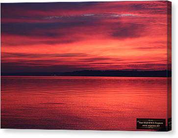 Canvas Print - The Morning View 2 by Paul SEQUENCE Ferguson             sequence dot net