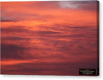 Canvas Print - The Morning View 5 by Paul SEQUENCE Ferguson             sequence dot net