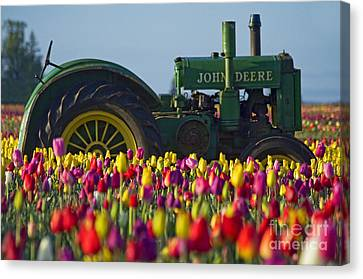 Canvas Print featuring the photograph The Most Photographed Tractor In Oregon by Nick  Boren