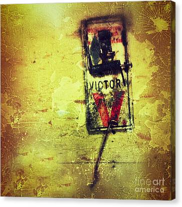 The Mousetrap Canvas Print by Amy Cicconi