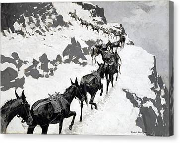 The Mule Pack Canvas Print by Frederic Remington