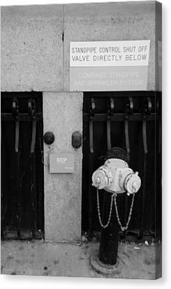 The New Normal In Black And White Canvas Print by Rob Hans