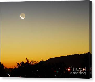 The Night Moves On Canvas Print by Angela J Wright