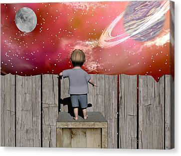 The Night Sky Canvas Print by Michele Wilson