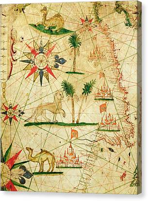 Camel Canvas Print - The North Coast Of Africa, From A Nautical Atlas, 1651 Ink On Vellum by Pietro Giovanni Prunes