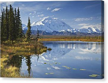The North Face And Peak Of Mt. Mckinley Canvas Print by John Delapp