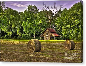 The Old Barn Round Bales Dead Oak Tree Canvas Print by Reid Callaway