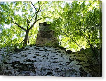 The Old Chimney In The Woods Canvas Print by Bill Cannon