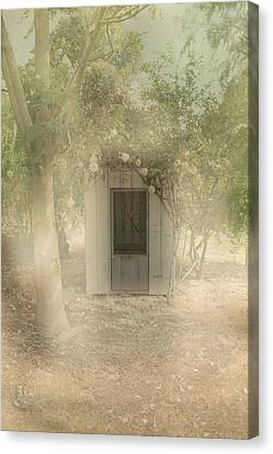 The Old Chook Shed Canvas Print by Elaine Teague
