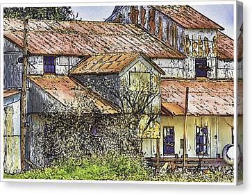 The Old Cotton Barn Canvas Print by Barry Jones