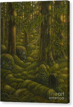 The Old Forest Canvas Print by Veikko Suikkanen