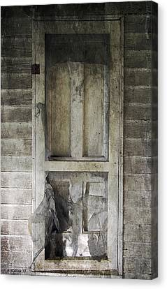 The Old Lowman Door Canvas Print by Brian Wallace