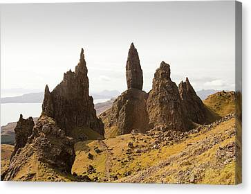 The Old Man Of Storr Canvas Print by Ashley Cooper