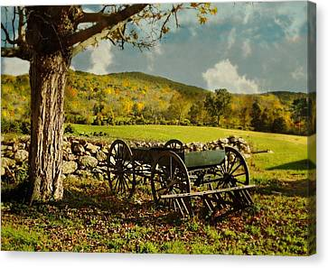 The Old Oak Canvas Print