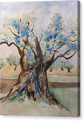 The Old Olive Tree Canvas Print by Esther Newman-Cohen