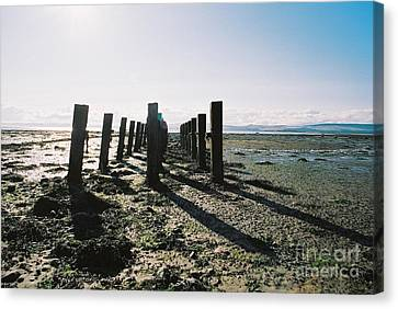 Canvas Print - The Old Pier by Nu Art