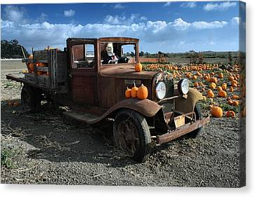 The Old Pumpkin Patch Canvas Print by Michael Gordon