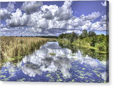 The Old Rice Fields Canvas Print
