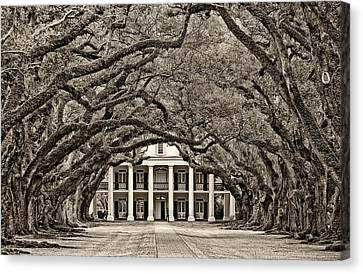 The Old South Sepia Canvas Print by Steve Harrington