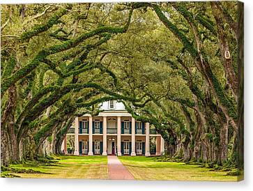 The Old South Version 2 Canvas Print by Steve Harrington