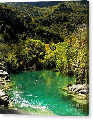 Canvas Print featuring the photograph The Old Swimmin' Hole by Lin Haring