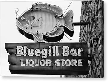 The Old Watering Hole Canvas Print
