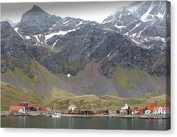 The Old Whaling Station At Grytviken Canvas Print by Ashley Cooper