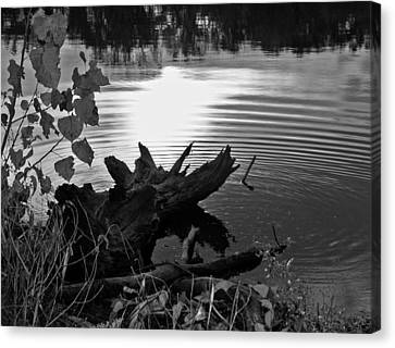 Canvas Print featuring the photograph The Ole Fishing Hole by Ellen Tully