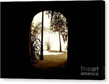 The Other Side Canvas Print by Will Cardoso