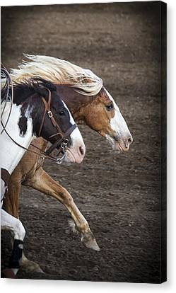 The Outlaw And The Law Canvas Print by Caitlyn  Grasso