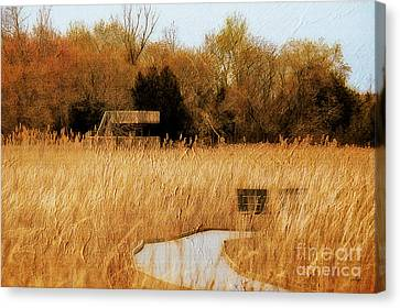 The Overlook Canvas Print by Lois Bryan