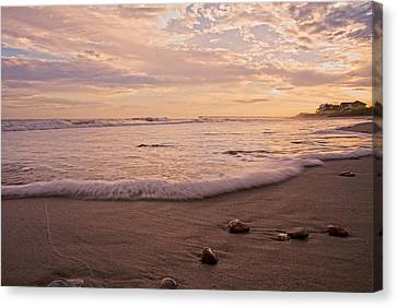 Reflecting Water Canvas Print - The Pace Of Topsail by Betsy Knapp