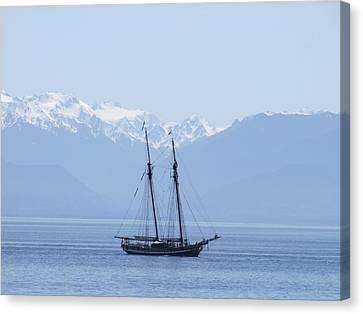 The Pacific Swift Canvas Print by George Cousins