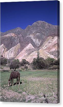 The Painters Palette Jujuy Argentina Canvas Print by James Brunker
