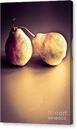 The Pair Canvas Print by Jan Bickerton