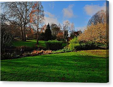 Canvas Print featuring the photograph The Park And The Autumn Sun by Marwan Khoury