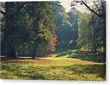 The Park In Autumn Canvas Print