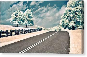 The Parkway II Canvas Print by Dan Carmichael