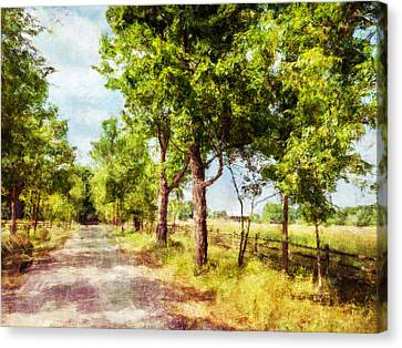 The Path Along The Trees Canvas Print by Celso Bressan