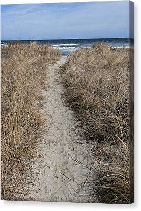 Canvas Print featuring the photograph The Path by Glenn DiPaola