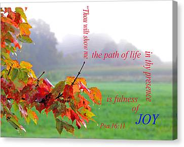 Canvas Print featuring the photograph The Path Of Life by Paul Miller