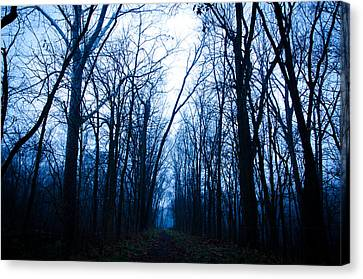 The Path Canvas Print by Off The Beaten Path Photography - Andrew Alexander