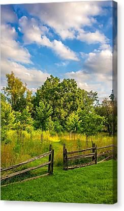 Split Rail Fence Canvas Print - The Path by Steve Harrington