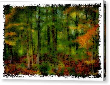 The Peak Color Of Autumn Canvas Print