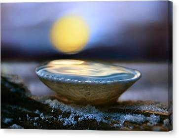 The Pearl Canvas Print by Laura Fasulo