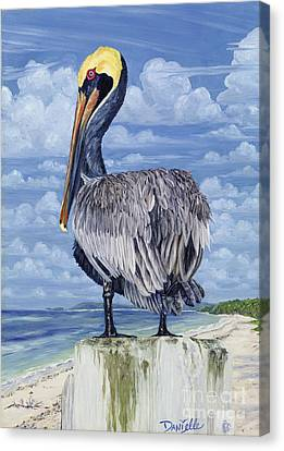 The Pelican Perch Canvas Print by Danielle  Perry