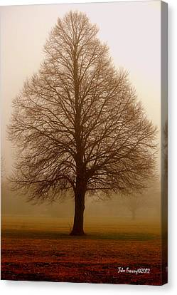 The Perfect Tree Canvas Print