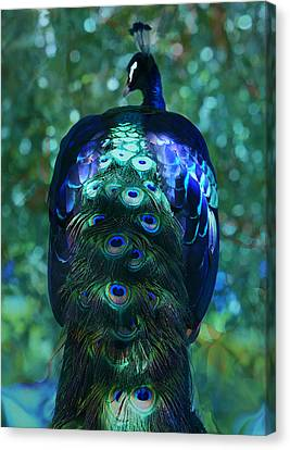 The Persian Bird Canvas Print by Kandy Hurley